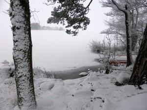 vinter_01