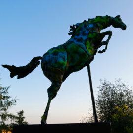 Här är Meetingpriset vid Linköping Horse Show!