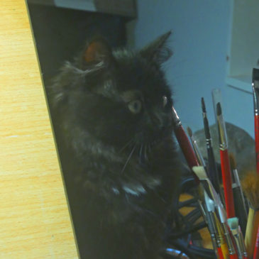 Med lite hjälp från en kattunge