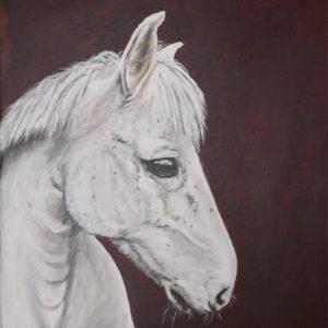 Målning av huvudet på en vit häst mot svart bakgrund
