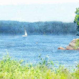 Canvastavla Roxen med segelbåt och svar